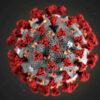 Информация о коронавирусной инфекции