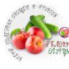 Время полезных овощей и фруктов